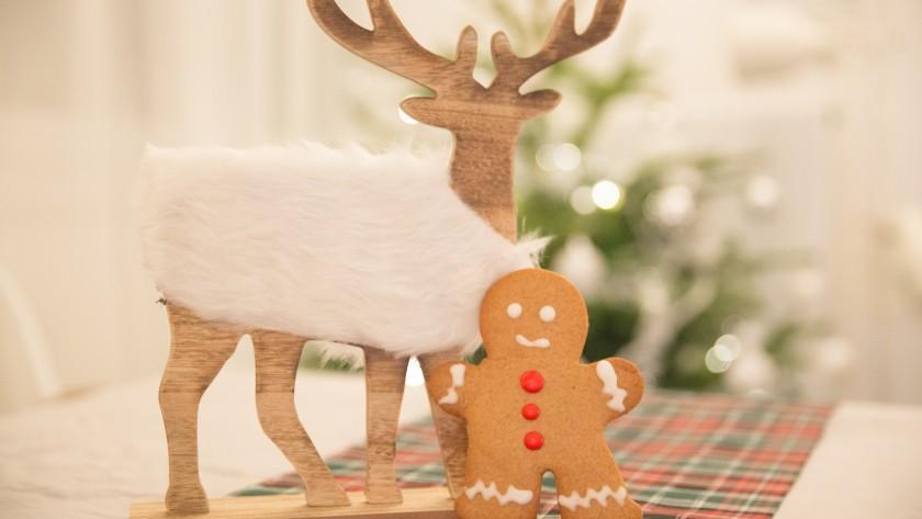 Tibiscuits de Noël aux épices (Food)